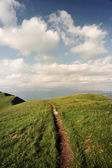 A path on top — Stock Photo