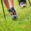 Nordic walking legs in mountains — Stock Photo #32571677