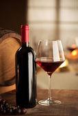 Wine tasting at restaurant — Stock Photo