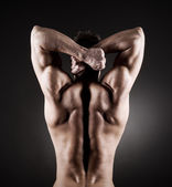 Muscular back — Stock Photo
