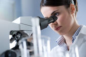 Female researcher analyzing samples — Stock Photo