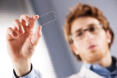 Researcher holding microscope slide — Stock Photo
