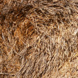 Haystack — Stock Photo #27958855