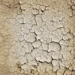 Stock Photo: Cracked earth