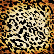 Leopard pattern — Stock Photo #27963805
