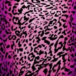 Leopard pattern — Stockfoto