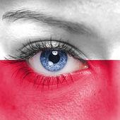 Poland flag — Stock Photo