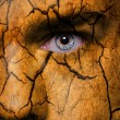 Face with cracked brown earth pattern — Stock Photo #28548703