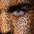 Leopard pattern on face — Stock Photo #28549243