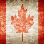 Canada flag — Stock Photo #29335501