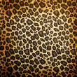 Stock Photo: Leopard pattern