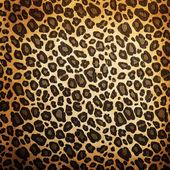 Leopard muster — Stockfoto