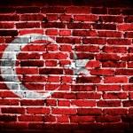 Grunge flag of Turkey on brick wall background — Stock Photo #29583491