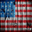 grunge flag of usa — Stock Photo #29669015