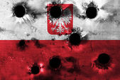 Grunge flag of Poland with bullet holes — Stock Photo