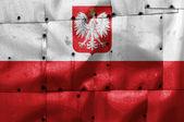 Poland flag on old plane metal plate — Stock Photo
