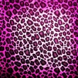 Leopard pattern — Stock Photo #30075895