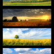 Stock Photo: Nature banners set