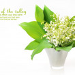 Lilly of the Valley — Stock Photo #30279513