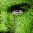 Face with leaf texture — Stock Photo