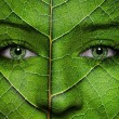 Stock Photo: Woman face with leaf texture and green eyes
