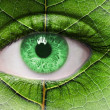 Green eye close up and leaf texture on face. — Stock Photo