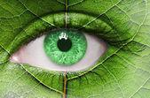 Zelené oko zblízka a listí textur na obličej. — Stock fotografie