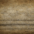 Old linen texture — Stock Photo #30417981
