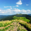 Stock Photo: Mountains Bieszczady. Poland. National Park. Tarnichill.