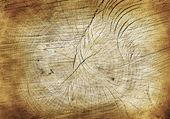 Very Old Wooden Background — Zdjęcie stockowe
