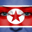 North Korea flag painted on human face — Stock Photo