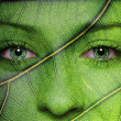 Woman face with leaf texture and green eyes — Stock Photo