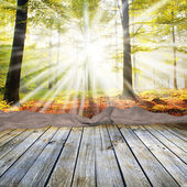 Empty wooden table and autumn forest — Stock Photo