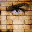 Brick wall on man face — Stock Photo