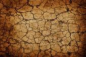 Textura de la pared marrón — Foto de Stock
