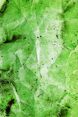 Great background made with a texture of a green wall — Stock Photo