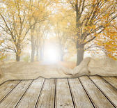 Old wooden table in autumn forest — Stock Photo