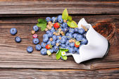 Composition of berrys — Stock Photo