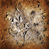Terre fissurée — Photo