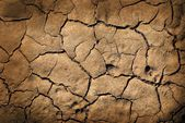 Earth texture — Stock Photo