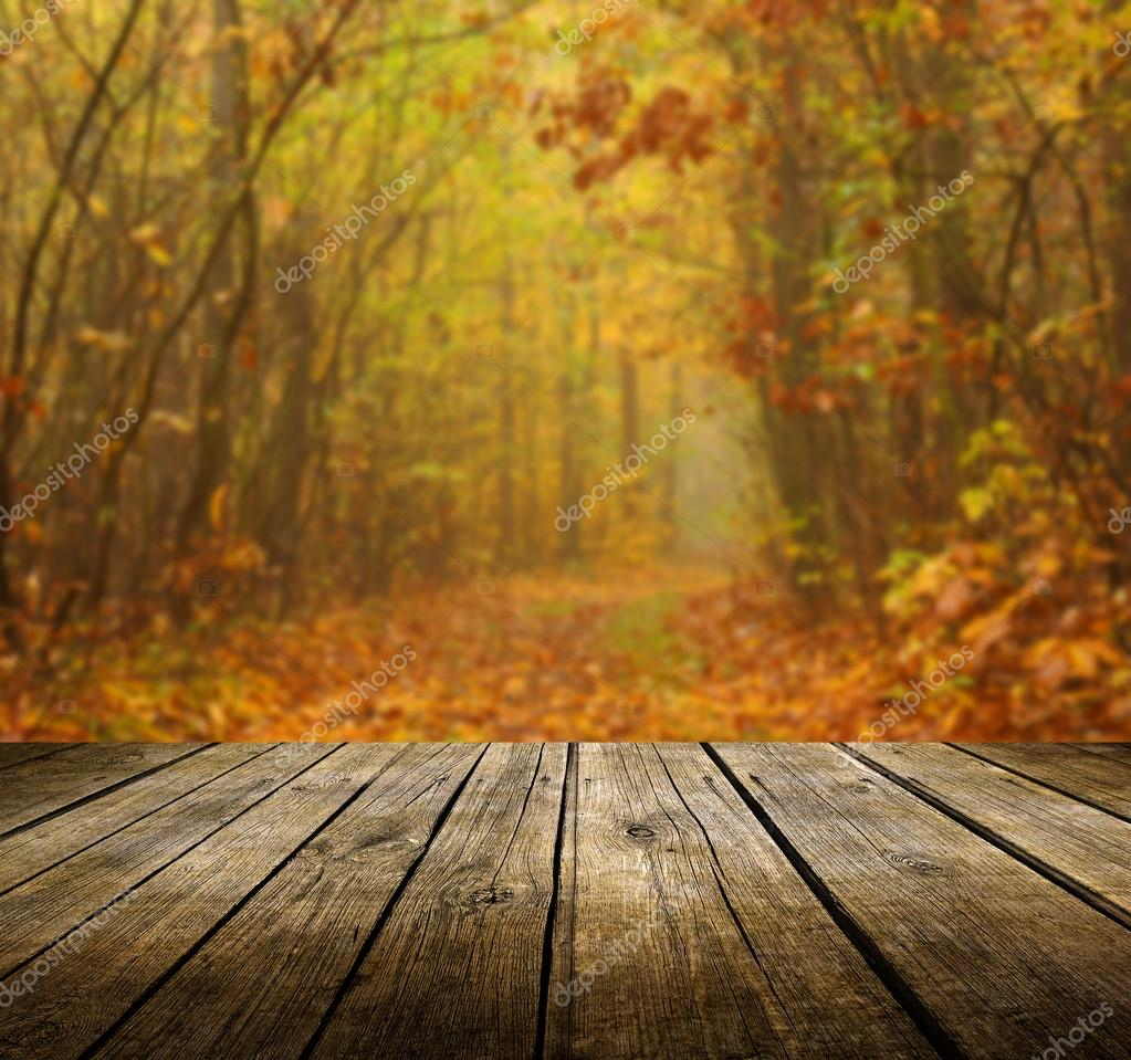 Table With Autumn Background Stock Photo Kwasny222