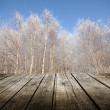 Empty table with winter trees in background. — Stock Photo #32640863