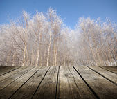 Empty table with winter trees in background. — Stock Photo