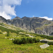 Stock Photo: Tatry mountains