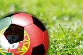 Bola de futebol com o pavilhão de portugal — Fotografia Stock
