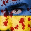 Ukraine flag — Stock Photo #41254333