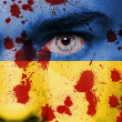Ukraine flag — Stockfoto #41254333