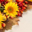 Autumn frame with fruits, pumpkins and sunflowers — Stock Photo