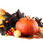 Autumn arrangement with pumpkins — Stock Photo