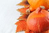 Hokkaido pumpkins with autumn leaves — Stock Photo